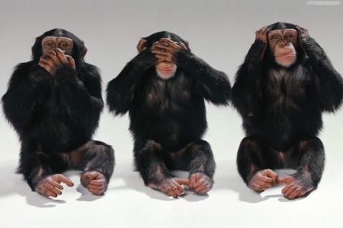 le_tre_scimmiette