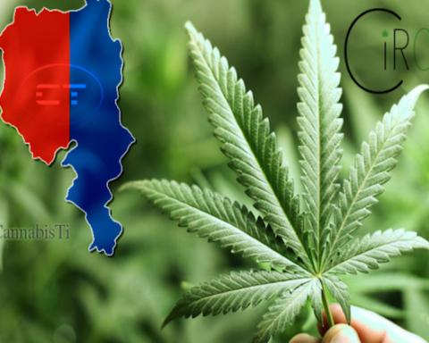 circa-cannabis-ticino